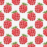 Seamless watercolor pattern with funny raspberries. On the white background, aquarelle.  Vector illustration. Hand-drawn background. Useful for invitations Royalty Free Stock Photos
