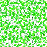 Seamless watercolor pattern with green leafs on white background. Endless artwork hand-drawn. Floral wallpaper summer Stock Photos