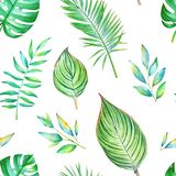 Seamless watercolor pattern with green tropical leaves. Isolated on white background Stock Photos
