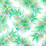 A seamless watercolor pattern with the green and violet leaves on the branches Royalty Free Stock Photography