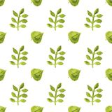 Seamless watercolor pattern with leaves on the Royalty Free Stock Image