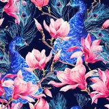 Seamless Watercolor Pattern with Pair of Peacock, Flowers Magnol stock image