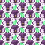 Seamless watercolor pattern with pansies on the Royalty Free Stock Images
