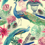 Seamless watercolor pattern with peacocks. Hand drawn vector. Stock Images