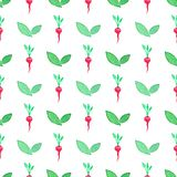 Seamless watercolor pattern with radishes on the Royalty Free Stock Image