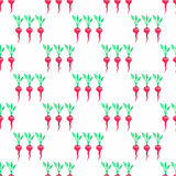 Seamless watercolor pattern with radishes on the Stock Photography