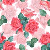 Seamless watercolor pattern of roses 1. Hand drawing. stock photography