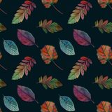 Elegant autumn leaves for different color design. Seamless watercolor pattern of colorful leaves. royalty free illustration