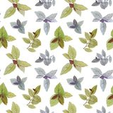Seamless watercolor pattern. A set of leaves. Watercolor painted leaves. Design element. Elegant leaves for art design. Hand paint stock illustration