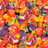 Seamless watercolor pattern with slices fruits, pomegranate fruit, peach fruit, plum, apricot, watermelon. Orange, purple vector illustration