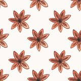 Seamless watercolor pattern with star anise on the Stock Photo