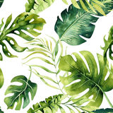 Seamless watercolor pattern of tropical leaves, dense jungle. Ha. Nd painted palm leaf. Texture with tropic summertime  may be used as background, wrapping paper Royalty Free Stock Photo