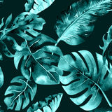 Seamless watercolor pattern of tropical leaves, dense jungle. Ha Royalty Free Stock Image