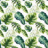 Seamless watercolor pattern of tropical leaves, dense jungle. Ha. Nd painted palm leaf. Texture with tropic summertime may be used as background, wrapping paper stock illustration