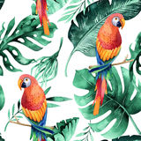Seamless watercolor pattern of tropical leaves, dense jungle. Ha. Seamless watercolor pattern of tropical leaves, dense jungle and parrot. Hand painted palm leaf stock illustration