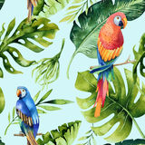 Seamless watercolor pattern of tropical leaves, dense jungle. Ha. Seamless watercolor pattern of tropical leaves, dense jungle and parrot. Hand painted palm leaf Stock Image