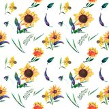 Seamless watercolor pattern on white background. Sunflowers, leaves and wild herbs stock illustration