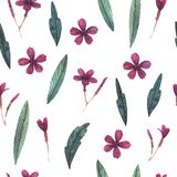 Seamless watercolor pattern of wild flowers royalty free illustration