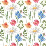 Seamless watercolor pattern with wild flowers Stock Image