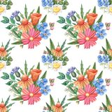 Seamless watercolor pattern, wild flowers on white royalty free stock photo