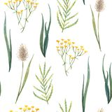 Seamless watercolor pattern of wild herbs and flowers stock illustration