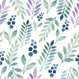 Seamless watercolor pattern of wildflowers Royalty Free Stock Images