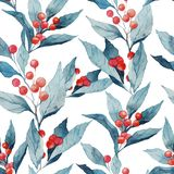 Seamless watercolor realistic pattern with holly leaves and berries. Textile and surface holiday design illustration Stock Photos