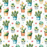 Seamless watercolor texture with cactus plant and succulent plant in pot Royalty Free Stock Photo