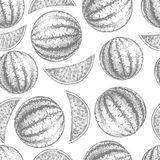 Seamless watermelon pattern. Fresh fruit sketch Stock Images