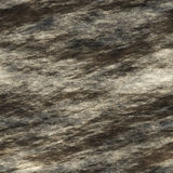 Seamless wet rock texture. Background Royalty Free Stock Image