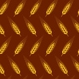 Seamless wheat, barley or rye background pattern. vector. Seamless wheat, barley or rye background pattern, abstract agricultural yellow and brown ornament with Royalty Free Stock Photos