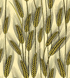Seamless wheat ears background Royalty Free Stock Photos