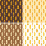 Seamless  wheat patterns, vector  Royalty Free Stock Photography
