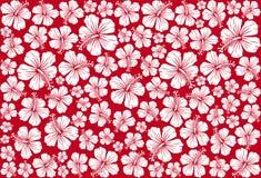 seamless whit för blom- hibiskusmodell Arkivfoton