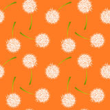 Seamless white dandelions background pattern Royalty Free Stock Photography