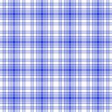 seamless white för blå pläd Arkivbilder