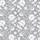 Floral lace pattern. Seamless white floral lace pattern on gray background Stock Images
