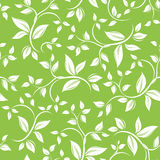 Seamless white floral pattern on green. Vector ill Stock Photo