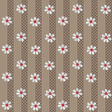 Seamless white flowers pattern on brown Royalty Free Stock Image
