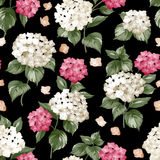 Seamless white flowers pattern Stock Photography