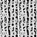 Seamless white flowers pattern white stripe background. Seamless white flowers pattern  black white stripe background Royalty Free Stock Image