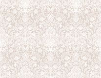 Seamless white lace. Background with floral pattern Stock Photos