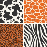 Seamless wild animal fur background Royalty Free Stock Images