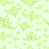 Seamless winged leaves Royalty Free Stock Photos