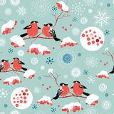 Seamless winter pattern of bullfinches and rowan Stock Photography