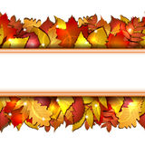 Seamless With Autumn Leaves Stock Images
