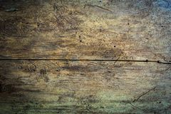 Seamless wood texture lumber eaten by bark beetles royalty free stock photo