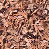 Seamless wooden chips on the ground texture. background. stock images
