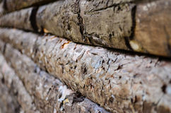 Seamless Wooden Planks Wood Royalty Free Stock Photos