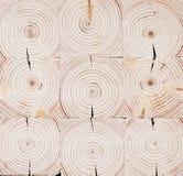 Seamless wooden round pattern. Sawed wood. Seamless wooden round pattern. Natural Royalty Free Stock Photos